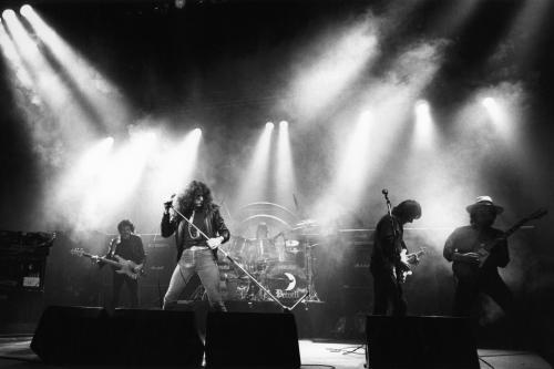 whitesnake live